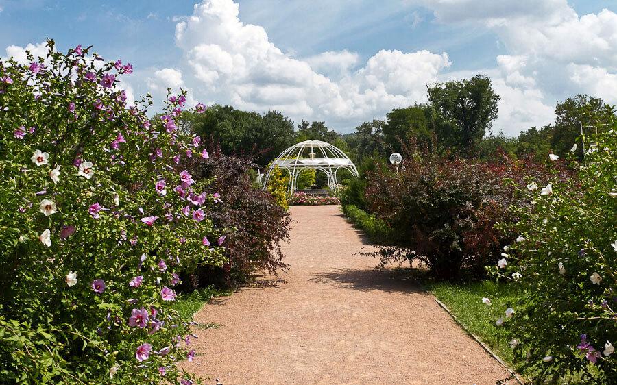 Воронцовский парк Симферополь